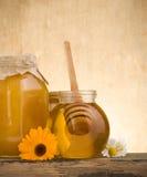 Vaso di vetro in pieno di miele e del bastone Immagini Stock Libere da Diritti