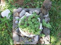 Vaso do jardim Imagem de Stock Royalty Free
