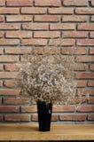 Vaso e muro di mattoni neri Fotografie Stock Libere da Diritti