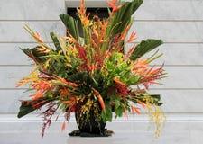 Vaso elaborado enchido com o arranjo de flor exótico fotografia de stock