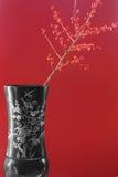 Vaso esotico con le bacche rosse Fotografie Stock Libere da Diritti