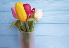 Vaso fresco das tulipas bonitas, bonito em um fundo de madeira azul Imagens de Stock Royalty Free