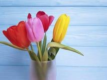 Vaso fresco das tulipas bonitas, em um fundo de madeira azul Foto de Stock Royalty Free