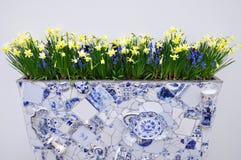 Vaso holandês da porcelana com narcisos amarelos amarelos Imagens de Stock Royalty Free