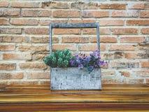 Vaso na caixa de madeira com punho Fotografia de Stock Royalty Free
