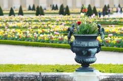 Vaso nel giardino del palazzo di Versailles, Parigi Immagine Stock Libera da Diritti