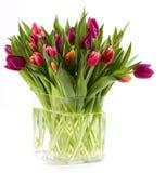 Vaso in pieno dei tulipani Fotografia Stock