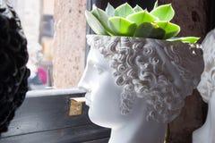 Vaso principal grego no perfil no estilo do vintage da janela imagem de stock