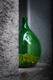 Vaso verde grande Cork Collection na janela Imagens de Stock