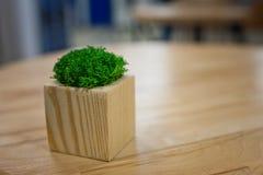 Vaso verde sulla tavola Fotografia Stock