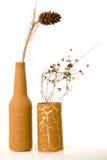 Vasos antigos com plantas secas. Imagens de Stock