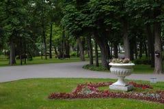 Vasos com as flores no parque Imagem de Stock