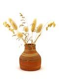 Vasos com plantas secadas Imagens de Stock