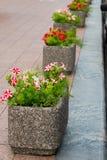 Vasos de flores de pedra no parque fotografia de stock royalty free