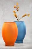 Vasos e flores coloridos Foto de Stock Royalty Free