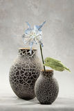 Vasos e flores decorativos Foto de Stock