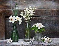 Vasos e garrafas pequenos com flores da mola Fotografia de Stock Royalty Free