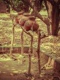 Vasos feitos a mão da argila fora Imagem de Stock Royalty Free