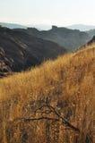 Vasquez Kołysa Naturalnego teren, jaru kraj Zdjęcia Stock