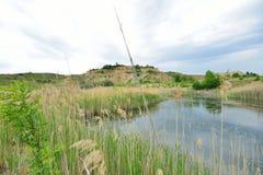 Vass och kaolin nära den blåa lagun sjön Royaltyfria Bilder