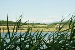 Vasser på sjön, högväxt gräs i förgrunden Arkivbild