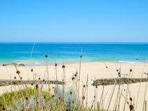 Vasser vid stranden Royaltyfri Foto
