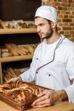 vassoio bello della tenuta del panettiere con i croissant fotografie stock libere da diritti