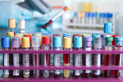 Vassoio con i tubi con i campioni di sangue identificati Fotografia Stock