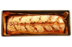 Vassoio con il pane casalingo del lievito naturale fresco isolato su fondo bianco Immagini Stock Libere da Diritti