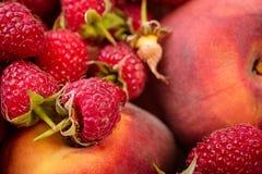 Vassoio con le verdure rosse fresche ed il concetto vegetariano di cibo sano di frutti fotografia stock libera da diritti