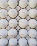 Vassoio dell'uovo del pollo Immagini Stock Libere da Diritti