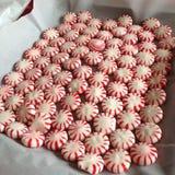 Vassoio della menta piperita di DIY per i biscotti Fotografia Stock