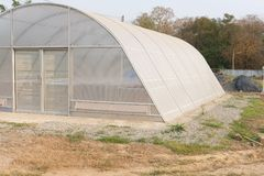 vassoio di alluminio nella serra dell'essiccatore del sole per il prodotto alimentare di secchezza Immagini Stock Libere da Diritti