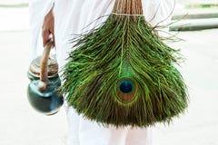 Vassoura Jain da pena do pavão Imagem de Stock