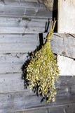 Vassoura seca para um banho fotografia de stock royalty free