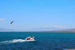 A yacht skims over Lake Qinghai royalty free stock image