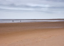 Vast beach and horizon with figures, Norfolk, UK. Vast beach and horizon, Norfolk, UK, with distant figures Royalty Free Stock Images