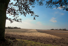 Vast field. A vast field prepared for agriculture stock photography