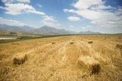 A vast field of hay stacks with mountains and clouds in the background Stock Photos