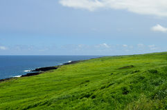 Vast fields of Hawaiian landscape Stock Images