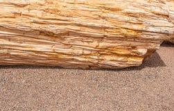 Vast gesteente en klein steenbehang royalty-vrije stock fotografie