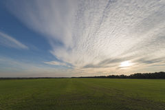 Vast grass land with evening sky and clouds Royalty Free Stock Images