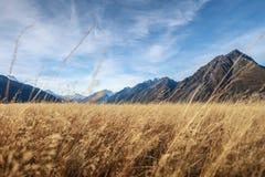 Vast grass land Stock Photo