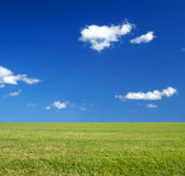 Vast Green Grass Field And Blue Sky Eco-friendly C Royalty Free Stock Photo