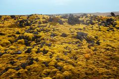 Vast lava fields in Iceland. Royalty Free Stock Image