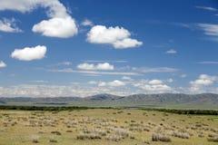 Vast Mongolian Landscape Stock Image