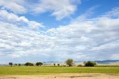 Vast Mongolian Landscape Stock Images