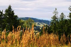 Vast panorama view from the forested hill in the Owl Mountains Landscape Park, Sudetes, Poland. Stock Photos