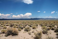 Vast plain with scrub bushes and distant mountains in California, USA. Many small scrub bushes dot a flat, open desert plain far into the distance. There are stock photo
