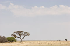 Vast Plains Royalty Free Stock Images